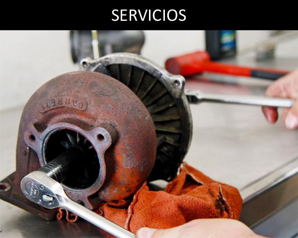 SERVICIOS 3 - Productos